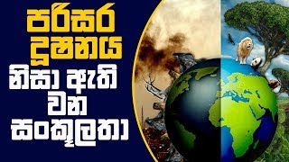 Piyum Vila | පරිසර දූෂනය නිසා ඇති වන සංකූලතා | 07-01-2019 | Siyatha TV Thumbnail