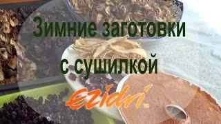 Зимние заготовки на сушилке Ezidri (Изидри)
