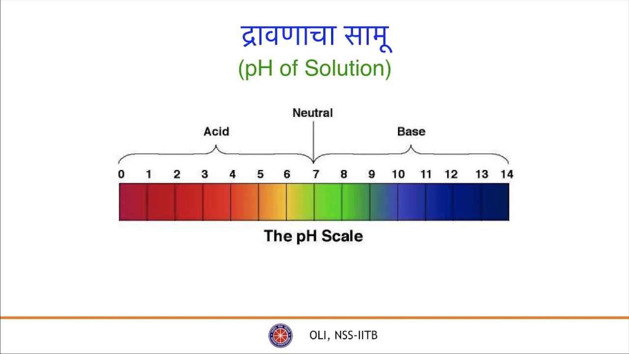 À¤†à¤® À¤² À¤†à¤® À¤² À¤° À¤µ À¤• À¤· À¤° À¤ À¤— À¥§ Acid Bases And Salt Part 1 Class 9 Science Marathi Youtube