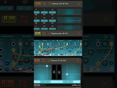 Odessa (now Rozeta Sequencer Suite) iOS app from Bram Bos, first try