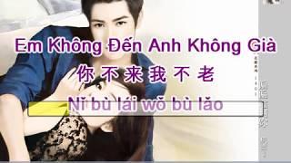 [Vietsub] Em Không Đến Anh Không Già - 你不来我不老 - Cao An & Tây Thiền Nữ Hài - 高安 & 西单女孩
