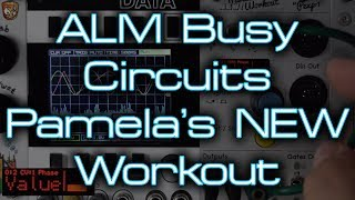 ALM Busy Circuits - Pamela