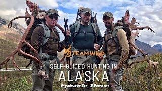 Self-guided Moose & Caribou Hunting in Alaska: Episode 3 - Butchering Big Bulls & Packing Out