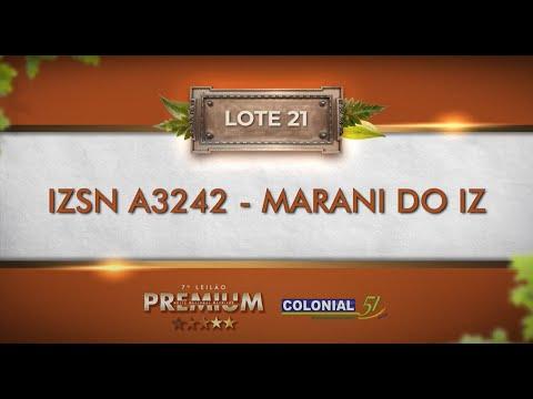 LOTE 21   IZSN A3242