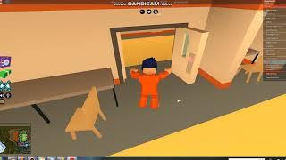rogor gavxdet roblox prison breakshi hackeri