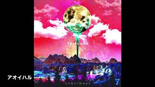 TRIPLANE - アオイハル (from 9th album unanimous)