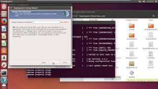 TeamSpeak 3 Client Linux Setup / Install
