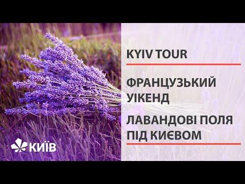 Київський Прованс: Порадів, Добропарк, Лавандовий дім