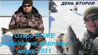 Зимняя рыбалка на озере ВОЖЕ Часть вторая Судак на жерлицы Winter fishing on LakeVozhe