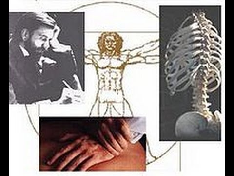 The Chiropractic Conspiracy by the American Medical Association Exposed