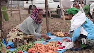 Civil Society Support Programme Ethiopia