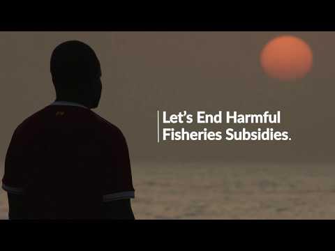 Story From Joal, Senegal: Ending Harmful Fisheries Subsidies
