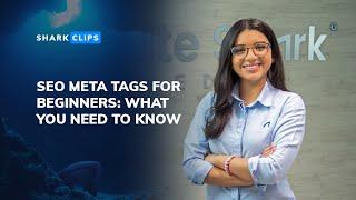 SEO Meta Tags for Beginners: Writing Meta Titles & Meta Descriptions