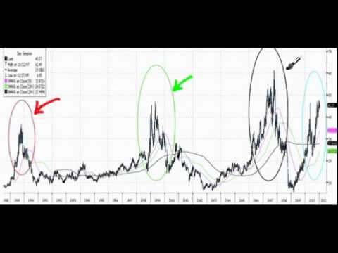 Excess Liquidity Indicator (BID 2011-01-22).mp4