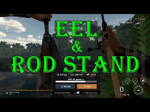 Fishing Planet - Eel & Rod Stand   Amazon Maze ( After Update )  