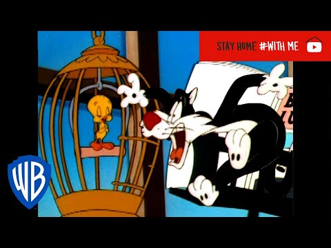 Looney Tunes | Tweety's Singing Practice | Classic Cartoon | WB Kids