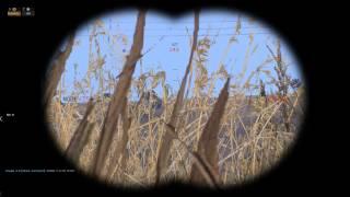 Arma 3 Epoch: У холмов есть глаза