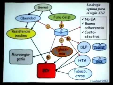 Tratamiento Diabetes Tipo 2 - Pablo Aschner MD.MSc - YouTube