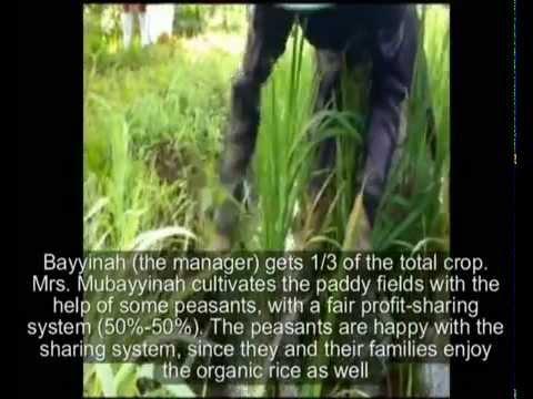 Mubayyinah Djohari and Agroecological Farming