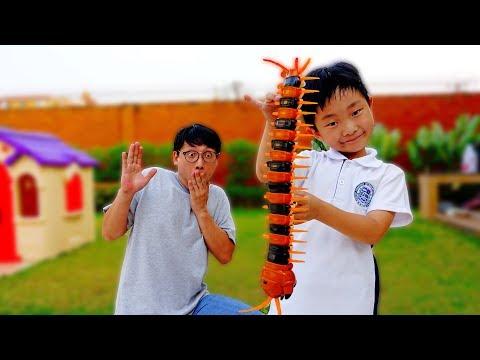 지네 장난감 곤충 장난감 숨바꼭질 놀이 Surprise Toy for Kids Game Play