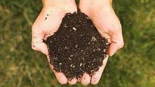 [2] Como preparar terra para plantio