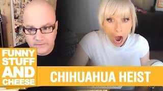 CHIHUAHUA HEIST - Funny Stuff And Cheese #83 Thumbnail