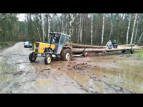Zrywka drzewa 2018 w trudnych warunkach    3x Ursus