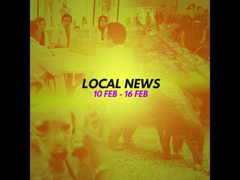 Local News 10 - 16 Feb