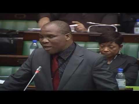 Debate on Vote 4: Home Affairs