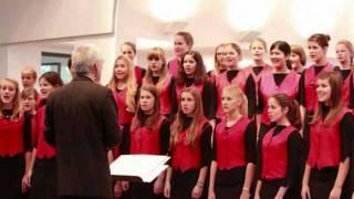 Ulmer Spatzen Chor - Dodi Li