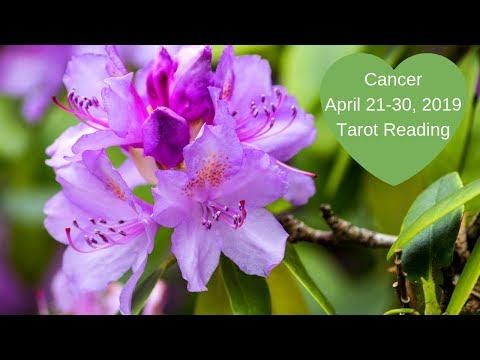 Cancer April 21-30, 2019 ~ The Waiting Is Over, It's Time To Create! ~ Tarot Reading