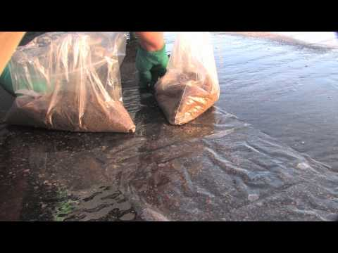 Industrial Stormwater: How to Collect a Sheet Flow Sample