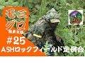 東方サバゲ録#25【ギリースーツでアタッカー?】東京マルイMP5 ASHロックフィー…