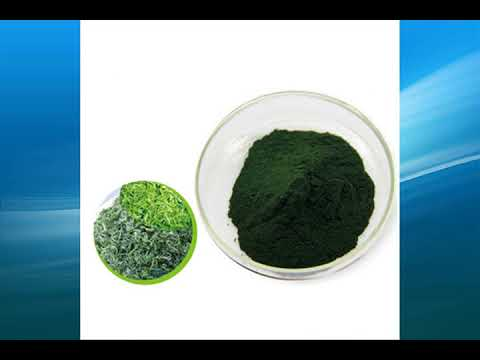 spirulina powder supplier,wholesale,bulk,factory