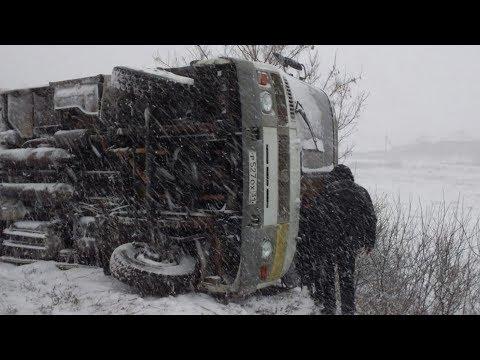 Под Белгородом опрокинулся автобус. Пострадали пять человек