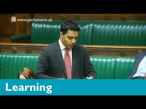 What is the difference between parliament and government?