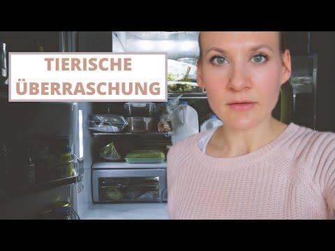 das-erwartet-man-nicht-im-kühlschrank-🙈😅-vlog-|-simone-stark