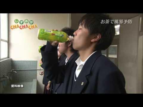 受験生は風邪予防には緑茶を飲む。