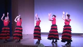 spanish dance girls of amity university haryana in international day