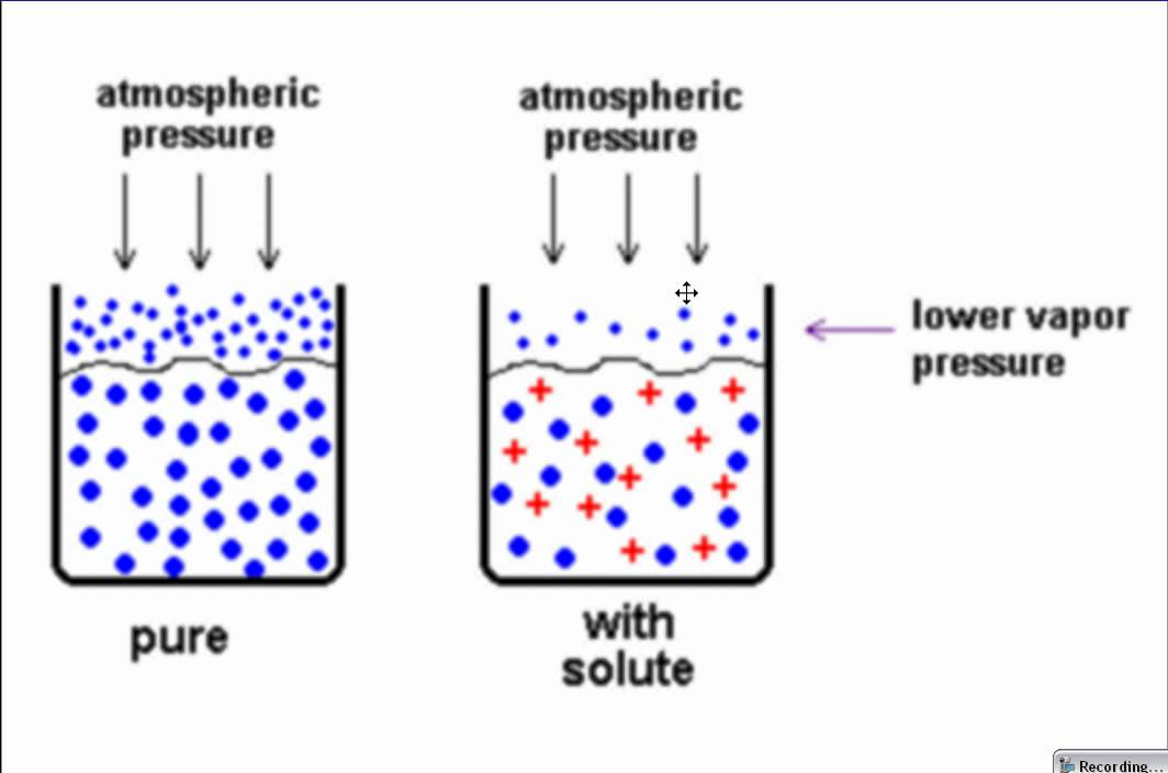colligative properties and osmotic pressure This pressure is called the osmotic pressure the colligative properties of a solution depend only on the number and the differences between the measured and expected colligative property values typically become more significant as solute concentrations increase.