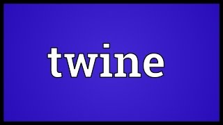 Twine Meaning