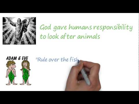 Religion and science - The relationship between human and animals