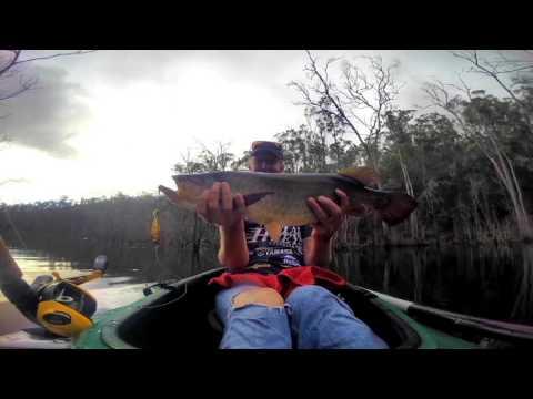 Saratoga fishing