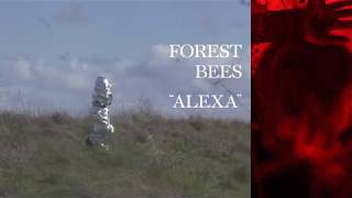 Forest Bees - Alexa | Official Video
