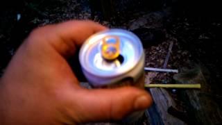 Mango Rita 8% Bud Light Iime