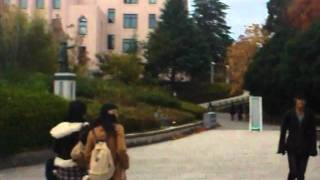 AIESEC in Japan OS election movie 2011