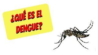 Del sintomas signos dengue pdf y