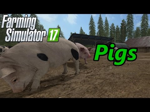 Farming Simulator 17 Tutorial | Pigs