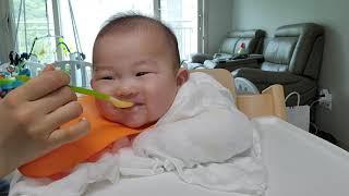 이강준 이유식 먹방(닭고기찹쌀미음)