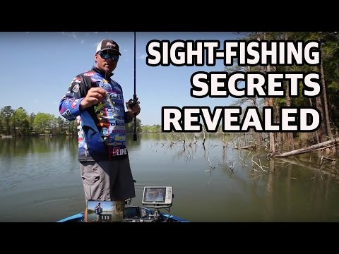 How to Sight Fish - Expert Fishing Tips You Need To Know For Bass